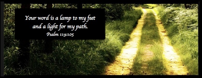 Summer Sonshine - Carla Anne Coroy - picture of sunny road in woods with Psalms bible reference your word is a lamp to my feet and a light to my path